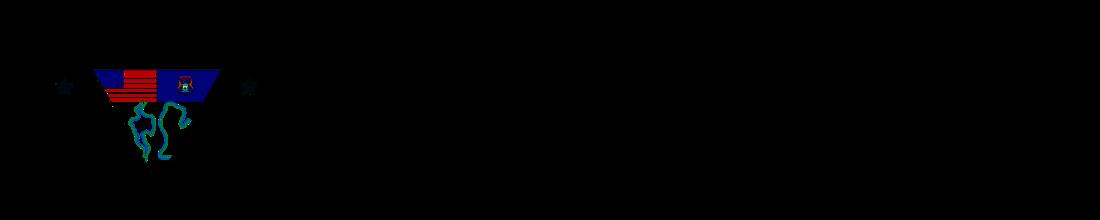 CSYDV